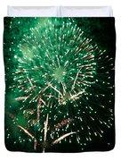 10223 Alstervergnuegen Fireworks 2013 Duvet Cover