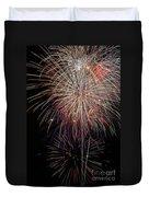 Fireworks6503 Duvet Cover