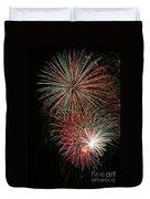 Fireworks6509 Duvet Cover