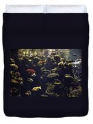 Fish Aquarium Duvet Cover