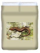 Five-lined Skink Duvet Cover