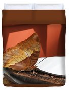 Flame-bordered Charaxes Butterfly #2 Duvet Cover