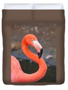 Flamingo Close Up Duvet Cover