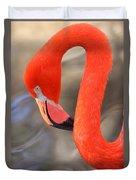 Flamingo Curves Duvet Cover