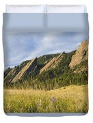 Flatirons With A Purple Wildflower  Duvet Cover