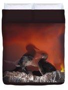 Flightless Cormorants And Volcanic Duvet Cover