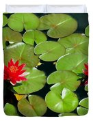 Floating Red Water Lilly Flowers On Pond Duvet Cover