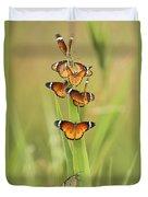 Flock Of Plain Tiger Danaus Chrysippus Duvet Cover