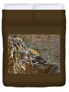 Flora In Sunlight In Big Painted Canyon Trail In Mecca Hills-ca Duvet Cover