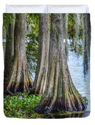 Florida Cypress Trees Duvet Cover