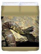 Florida King Snake Lampropeltis Getula Floridana Usa Duvet Cover