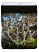 Florida Scrub Oaks Painted   Duvet Cover
