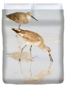 Florida Shorebirds - Willets In Their Summer Finery Duvet Cover
