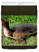 Florida Softshell Turtle Apalone Ferox Duvet Cover