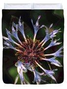 10415 Cornflower Duvet Cover