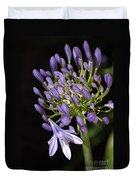 Flower- Agapanthus-blue-buds-one-flower Duvet Cover