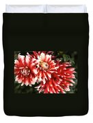 Flower-dahlia-red-white-trio Duvet Cover