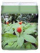 Flowering Red Ginger Plant Duvet Cover