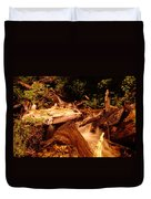 Flowing Betwixed Old Wood Near Mt St Helens Duvet Cover