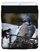 Fluffy Blue Jay Duvet Cover