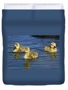 Fluffy Floaters  Duvet Cover