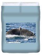 Flukes Of A Sperm Whale Duvet Cover