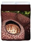Fly Pollinating Rafflesia Sabah Borneo Duvet Cover