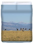 Flying Canadian Geese Colorado Rocky Mountains 1 Duvet Cover