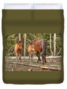 Foal Spot Duvet Cover
