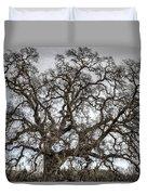 Folsom Old Oak  Duvet Cover