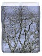 For The Love Of Trees - 2  Duvet Cover