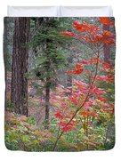 Forest Autumn Duvet Cover