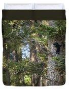 Forest Black Bear Cub Duvet Cover