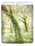 Forest Glow - The Magical Trees Of The Los Osos Oak Reserve Duvet Cover