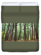 Forest In Early Morning, Wetlands Duvet Cover