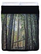 Forest Morning Duvet Cover