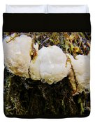 Forest Mushroom Trio Duvet Cover