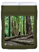 Forest Of Cathedral Grove Collection 2 Duvet Cover