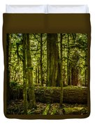 Forest Of Cathedral Grove Collection 3 Duvet Cover