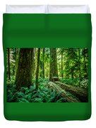 Forest Of Cathedral Grove Collection 8 Duvet Cover
