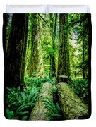 Forest Of Cathedral Grove Collection 9 Duvet Cover