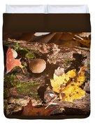 Forest Scene 6 Duvet Cover