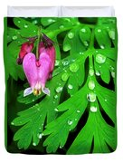 Formosa Bleeding Heart On Ferns Duvet Cover