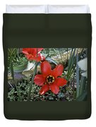 Fosteriana Tulips Red Emperors Duvet Cover