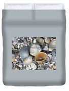 Four Beautiful Shells Duvet Cover