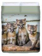 Four Fox Kits Duvet Cover