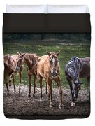 Four Horses E137 Duvet Cover