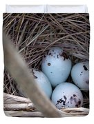 Four Red-winged Blackbird Eggs Duvet Cover by J McCombie