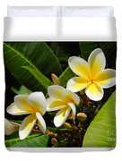 Four Summer Frangipanis Duvet Cover