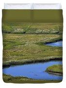 Fox Creek Marsh Duvet Cover